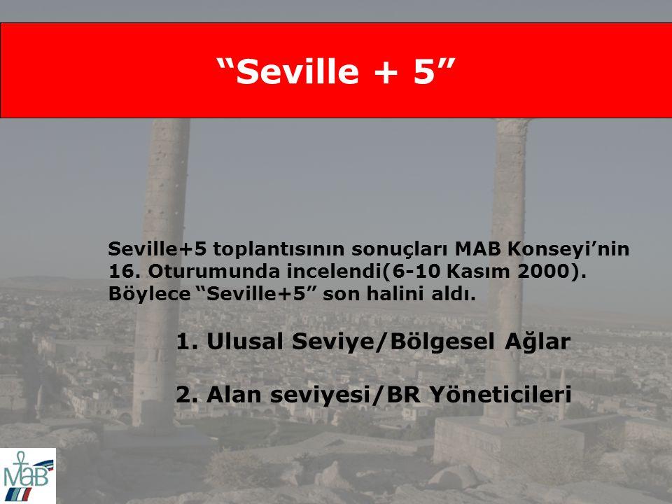 Seville + 5 Seville+5 toplantısının sonuçları MAB Konseyi'nin 16.