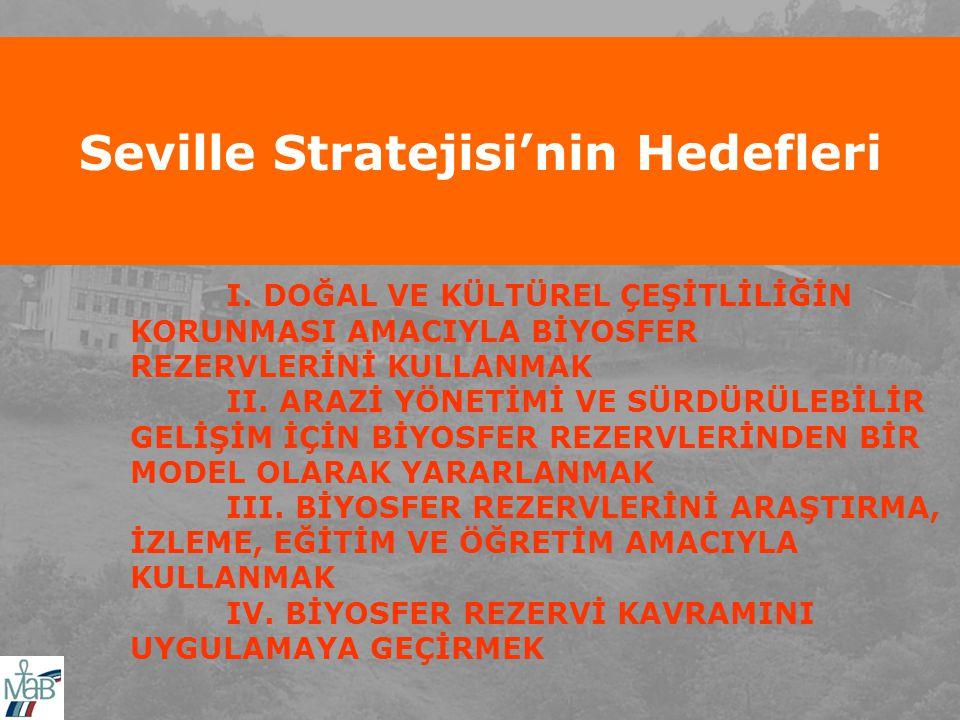 Seville Stratejisi'nin Hedefleri I.