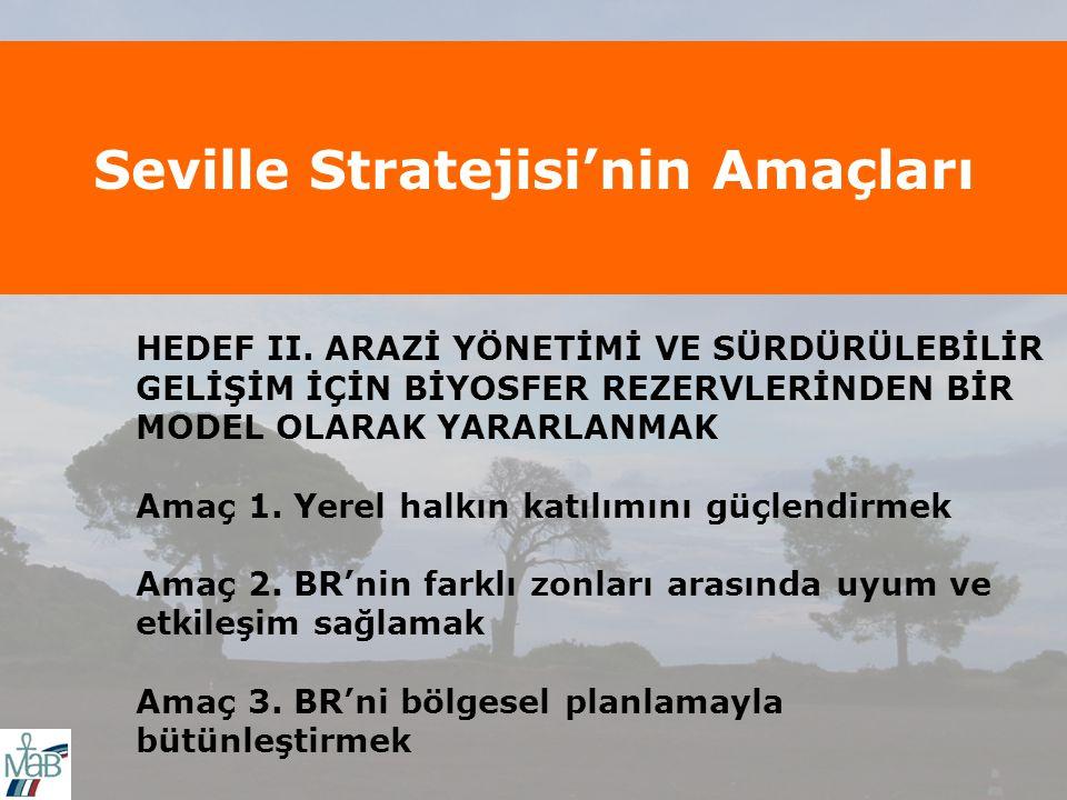 Seville Stratejisi'nin Amaçları HEDEF II.
