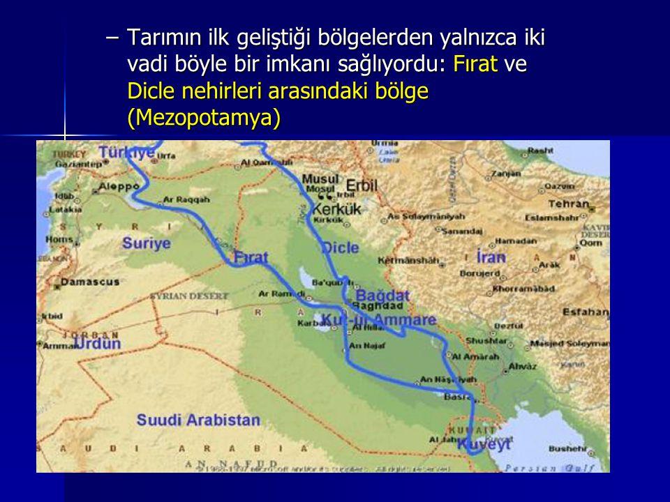 –Tarımın ilk geliştiği bölgelerden yalnızca iki vadi böyle bir imkanı sağlıyordu: Fırat ve Dicle nehirleri arasındaki bölge (Mezopotamya)
