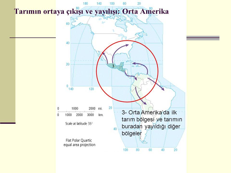 Tarımın ortaya çıkışı ve yayılışı: Orta Amerika 3- Orta Amerika'da ilk tarım bölgesi ve tarımın buradan yayıldığı diğer bölgeler