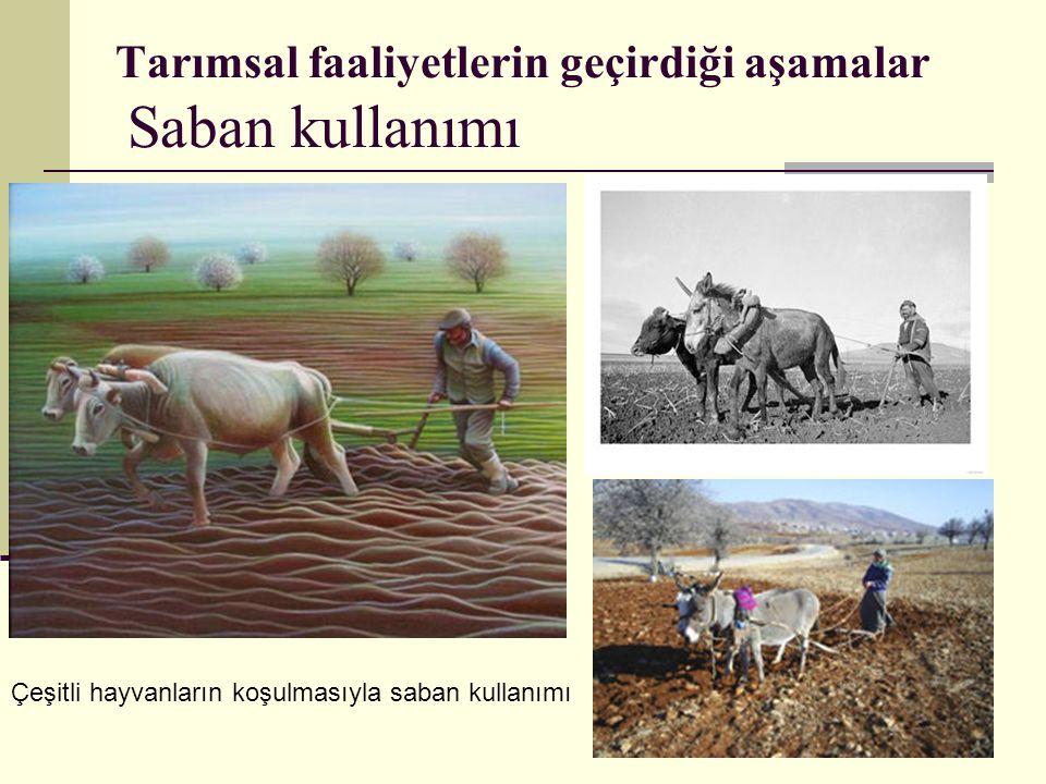 Tarımsal faaliyetlerin geçirdiği aşamalar Saban kullanımı Çeşitli hayvanların koşulmasıyla saban kullanımı