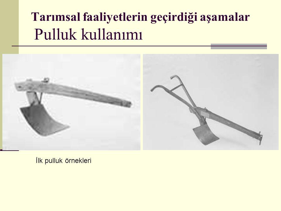 Tarımsal faaliyetlerin geçirdiği aşamalar Pulluk kullanımı İlk pulluk örnekleri