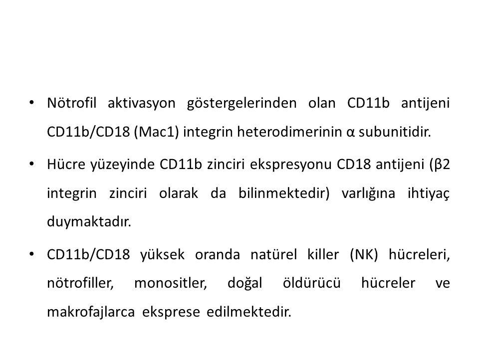 CD11b integrini dolaşan nötrofillerin enflamatuar bölgeye migrasyonuna aracılık eden önemli bir adezyon molekülüdür.