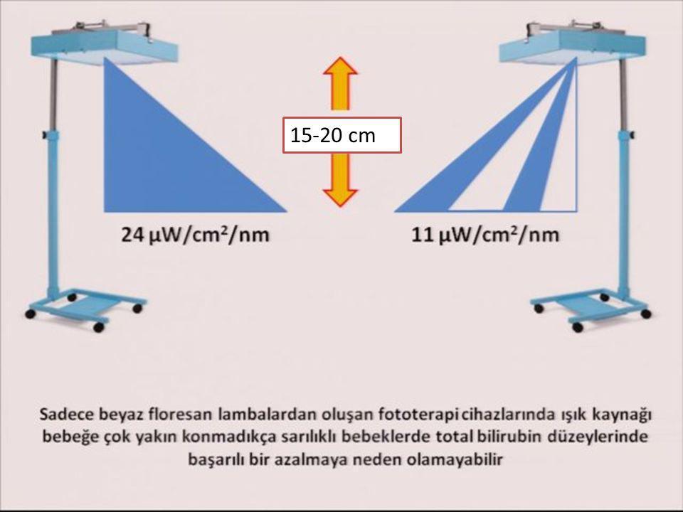 15-20 cm