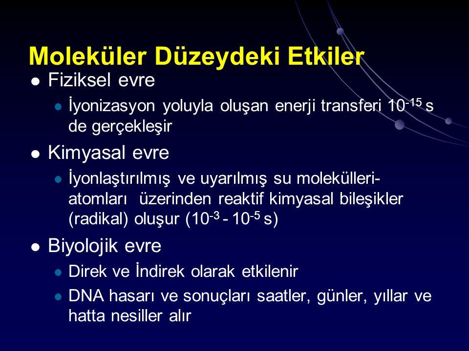 Moleküler Düzeydeki Etkiler Fiziksel evre İyonizasyon yoluyla oluşan enerji transferi 10 -15 s de gerçekleşir Kimyasal evre İyonlaştırılmış ve uyarılm