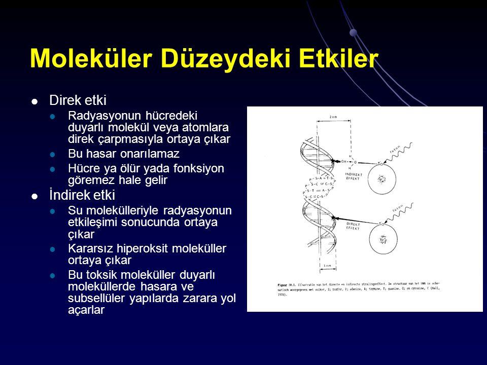 Moleküler Düzeydeki Etkiler Direk etki Radyasyonun hücredeki duyarlı molekül veya atomlara direk çarpmasıyla ortaya çıkar Bu hasar onarılamaz Hücre ya