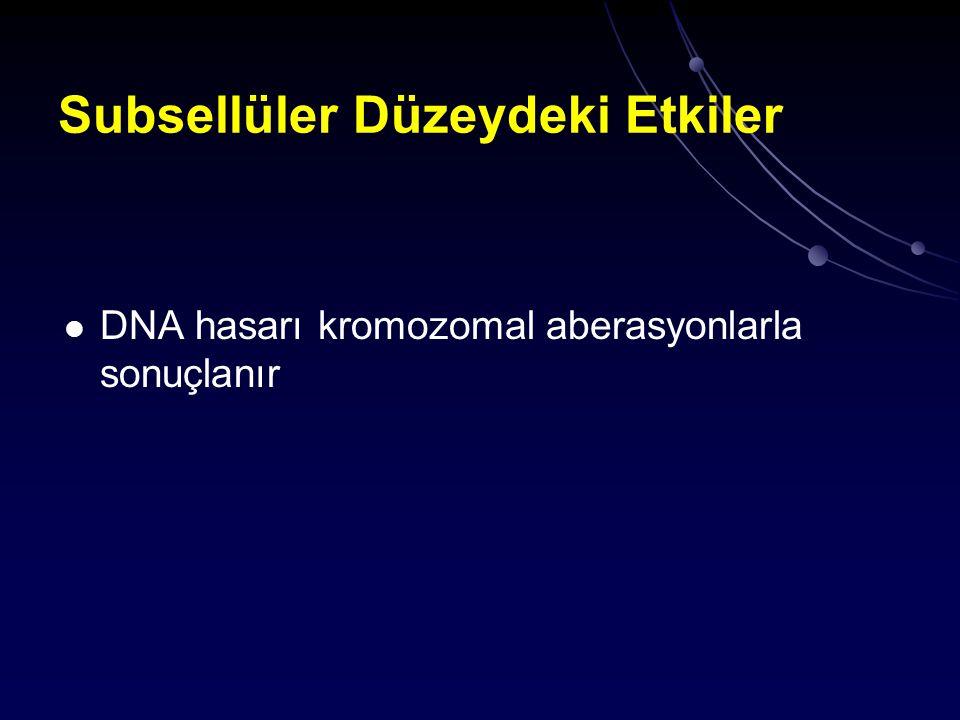 Organ Düzeyindeki Etkiler Deterministik etki Etkinin olasılığı ve şiddeti abzorbe edilen doza bağımlı Doz-etki ilişkisinde eşik düzey var Stokastik etki Doz-etki ilişkisinde eşik düzey yok Etkinin olasılığı abzorbe edilen doza bağımlı fakat şiddeti bağımsız En önemli örnek karsinogenez ve genetik etkilerdir