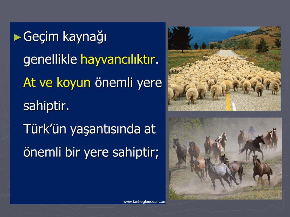 ► Türk toplumunun mücadeleci ve pratik zekalı olma sebebi; Yarı göçebe ya da konar göçer dediğimiz hayat tarzından kaynaklanmaktadır.