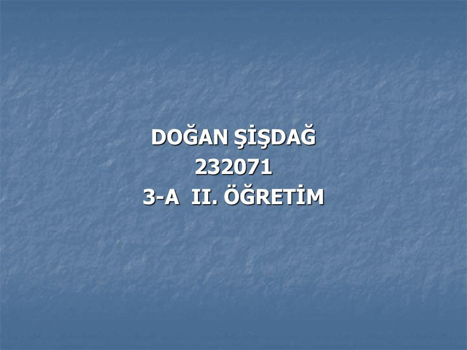 DOĞAN ŞİŞDAĞ 232071 3-A II. ÖĞRETİM