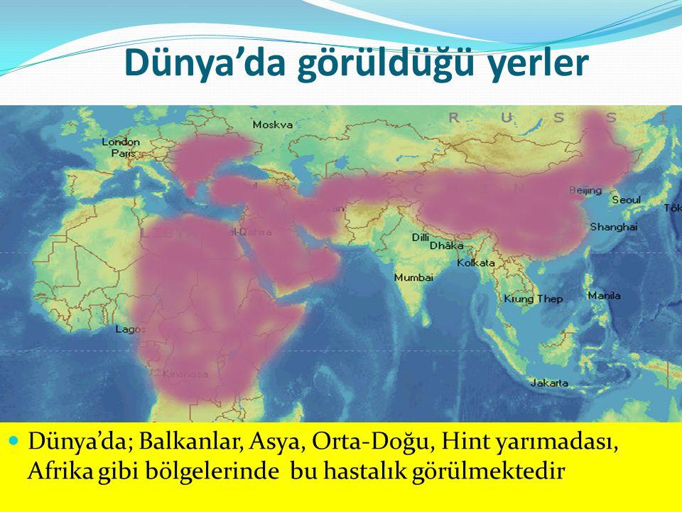 Dünya'da görüldüğü yerler Dünya'da; Balkanlar, Asya, Orta-Doğu, Hint yarımadası, Afrika gibi bölgelerinde bu hastalık görülmektedir