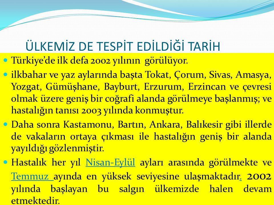 ÜLKEMİZ DE TESPİT EDİLDİĞİ TARİH Türkiye'de ilk defa 2002 yılının görülüyor. ilkbahar ve yaz aylarında başta Tokat, Çorum, Sivas, Amasya, Yozgat, Gümü