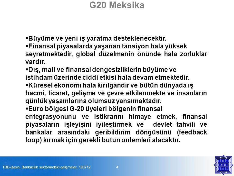 G20 Meksika  Büyüme ve yeni iş yaratma desteklenecektir.  Finansal piyasalarda yaşanan tansiyon hala yüksek seyretmektedir, global düzelmenin önünde