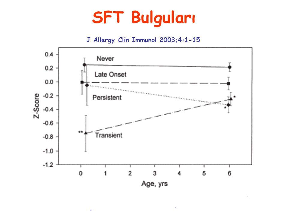 SFT Bulguları J Allergy Clin Immunol 2003;4:1-15
