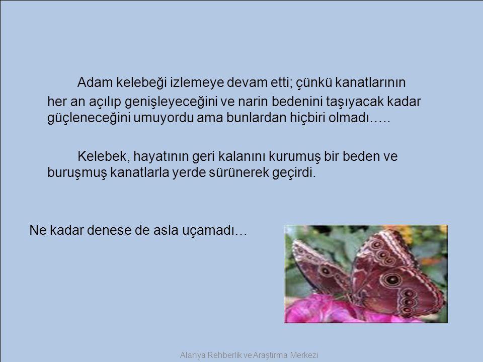 Adam kelebeği izlemeye devam etti; çünkü kanatlarının her an açılıp genişleyeceğini ve narin bedenini taşıyacak kadar güçleneceğini umuyordu ama bunla