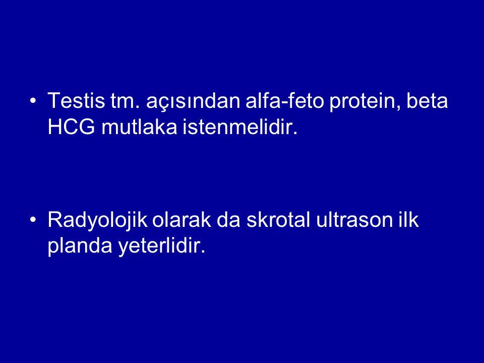 Testis tm. açısından alfa-feto protein, beta HCG mutlaka istenmelidir. Radyolojik olarak da skrotal ultrason ilk planda yeterlidir.