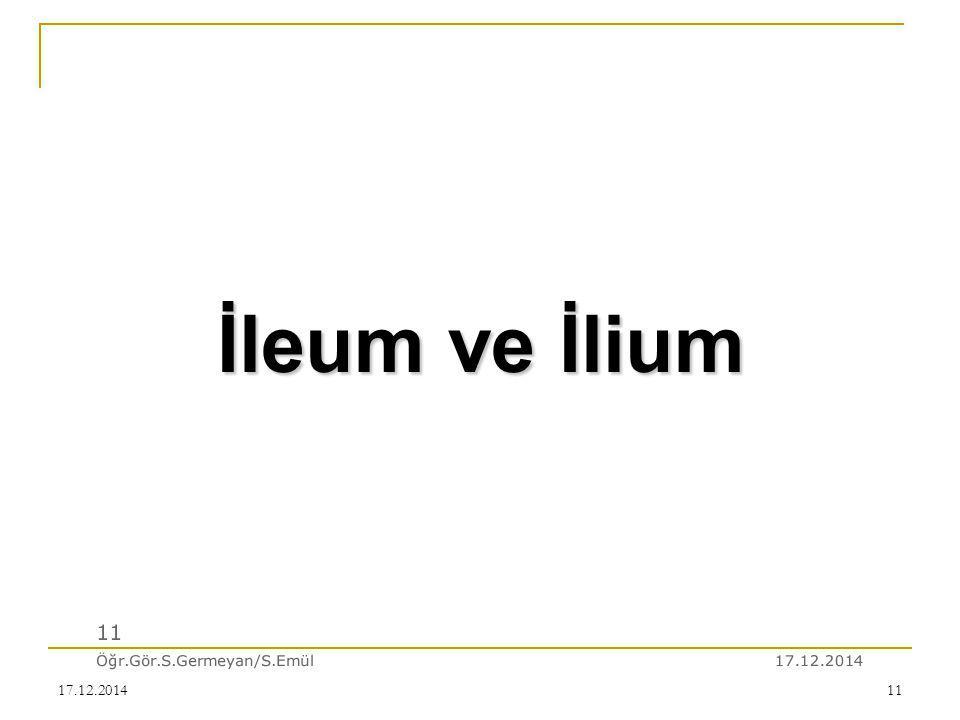 17.12.201411 17.12.2014 11 Öğr.Gör.S.Germeyan/S.Emül İleum ve İlium