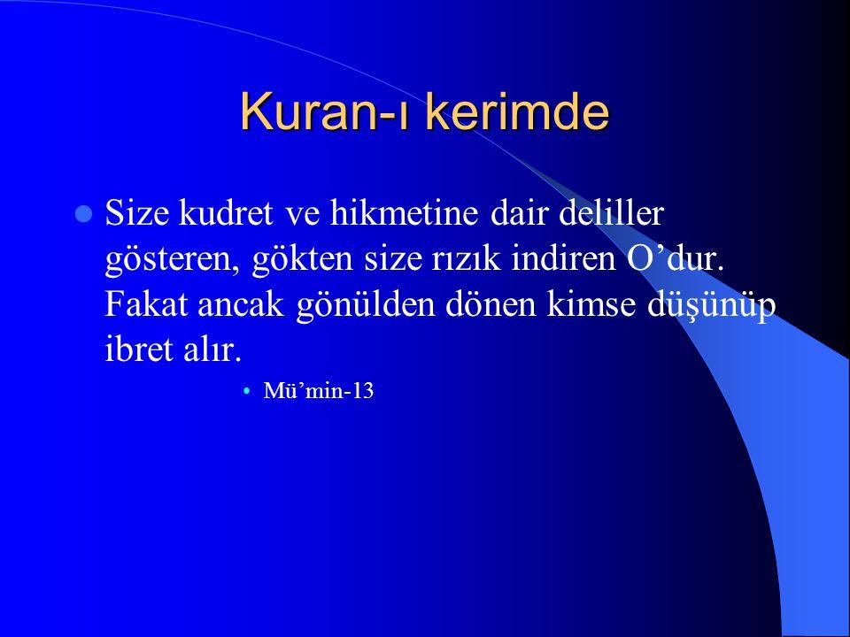 Kuran-ı kerimde Size kudret ve hikmetine dair deliller gösteren, gökten size rızık indiren O'dur.