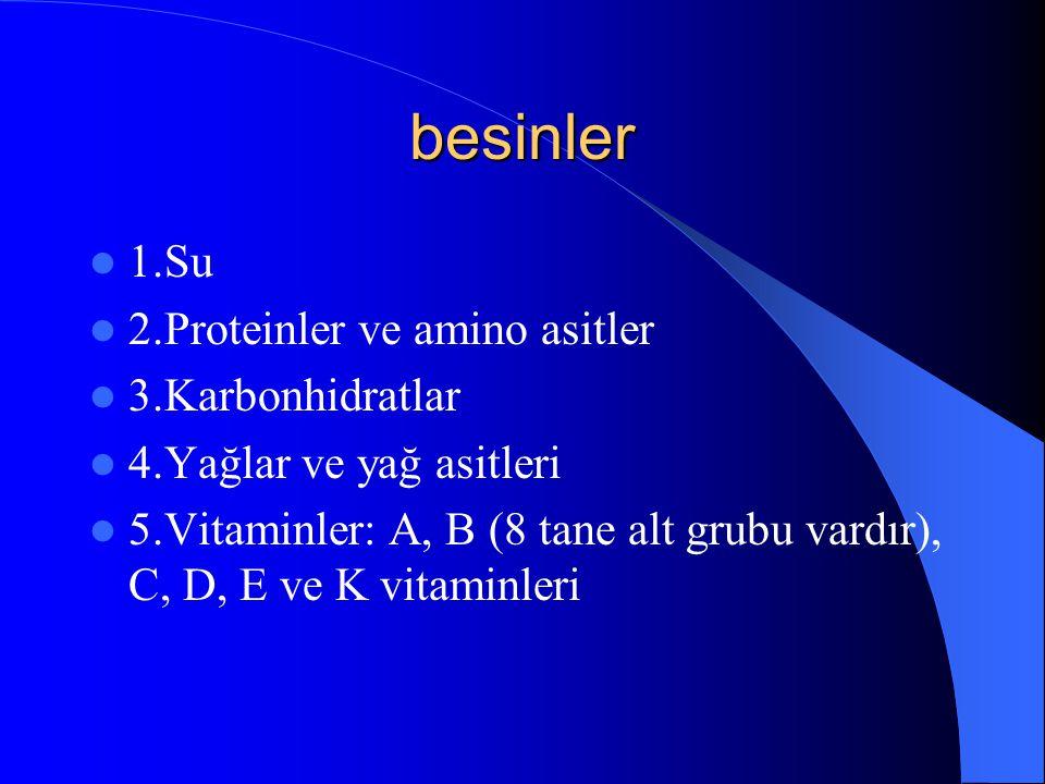 besinler 1.Su 2.Proteinler ve amino asitler 3.Karbonhidratlar 4.Yağlar ve yağ asitleri 5.Vitaminler: A, B (8 tane alt grubu vardır), C, D, E ve K vitaminleri
