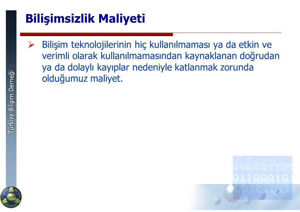 Türkiye Bilişim Derneği Bilişimsizlik Maliyeti  Bilişim teknolojilerinin hiç kullanılmaması ya da etkin ve verimli olarak kullanılmamasından kaynaklanan doğrudan ya da dolaylı kayıplar nedeniyle katlanmak zorunda olduğumuz maliyet.