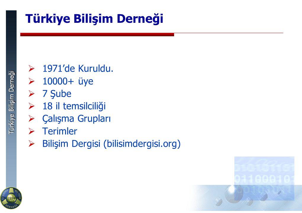 Türkiye Bilişim Derneği  1971'de Kuruldu.