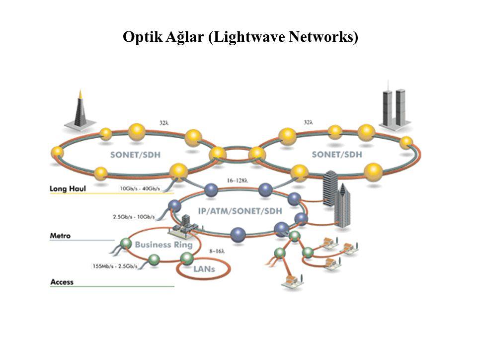 Optik Ağlar (Lightwave Networks)