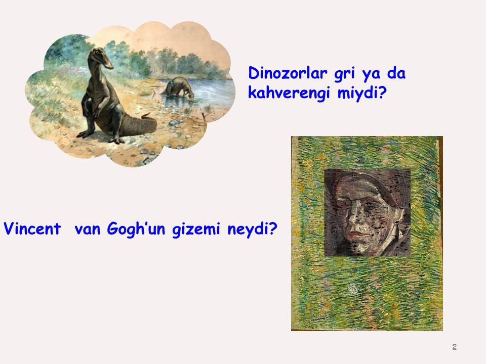 2 Dinozorlar gri ya da kahverengi miydi? Vincent van Gogh'un gizemi neydi?