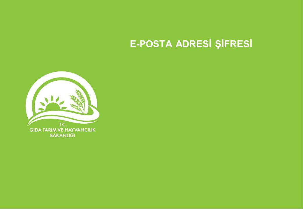 E-POSTA ADRESİ ŞİFRESİ