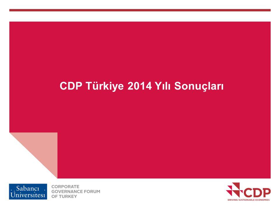 CDP Türkiye 2014 Yılı Sonuçları