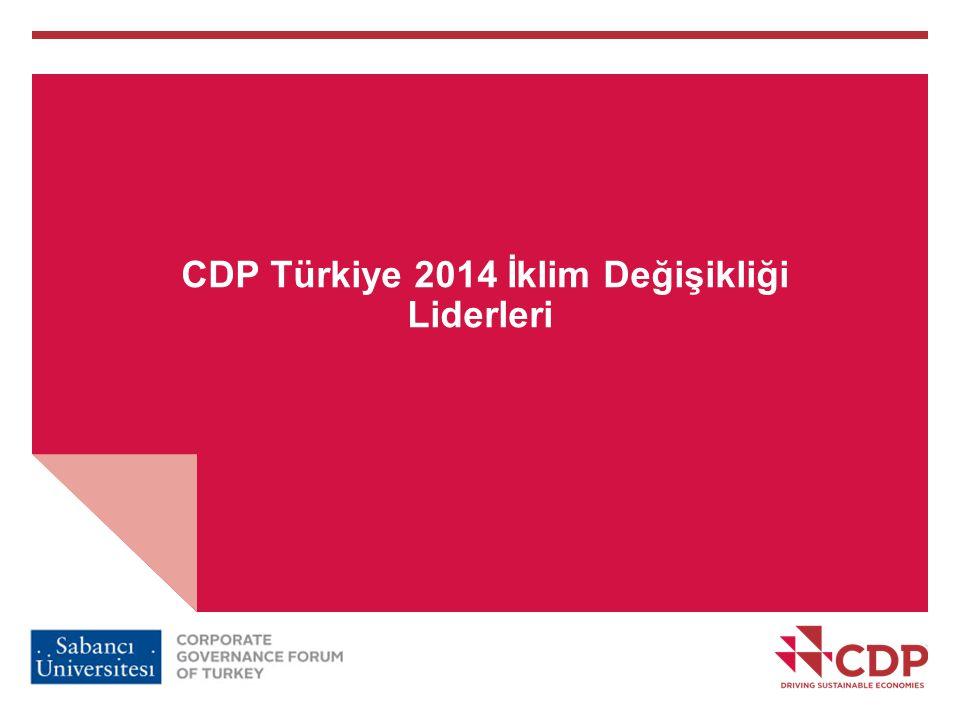 CDP Türkiye 2014 İklim Değişikliği Liderleri