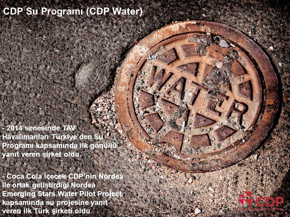 CDP Su Programı (CDP Water) - 2014 senesinde TAV Havalimanları Türkiye'den Su Programı kapsamında ilk gönüllü yanıt veren şirket oldu. - Coca Cola İçe