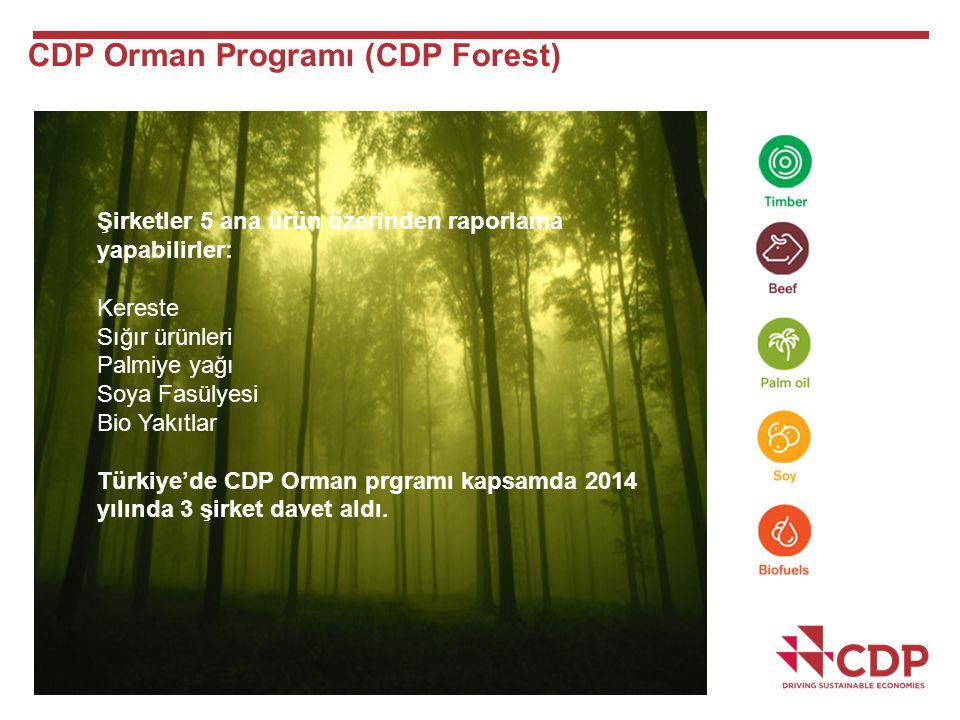 CDP Orman Programı (CDP Forest) Şirketler 5 ana ürün üzerinden raporlama yapabilirler: Kereste Sığır ürünleri Palmiye yağı Soya Fasülyesi Bio Yakıtlar