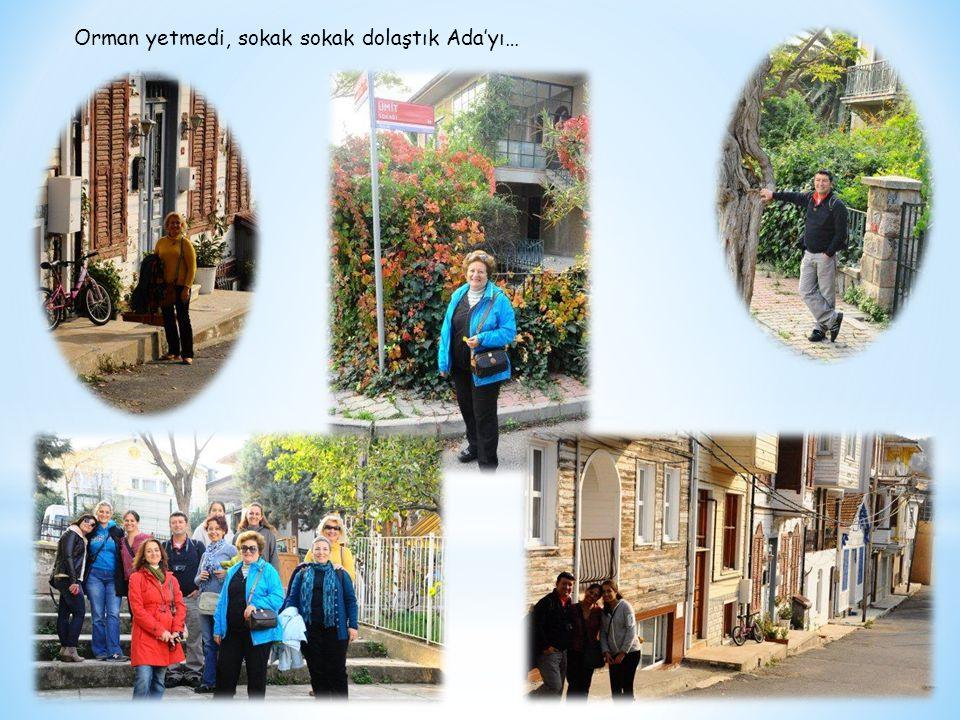 Ustura Kemal Film seti ve karşısında Gül ile Necdet'in evleri ziyaret edildi…Set ekibi ile samimiyet kuran bazı Arkadaşlar bir sonraki dizide yer alacak sanki…