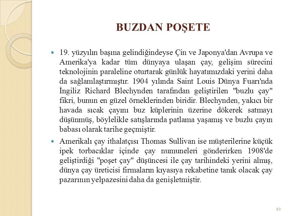 BUZDAN POŞETE 19.