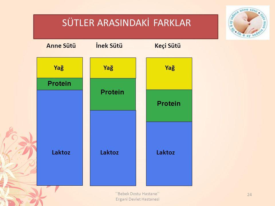 Protein SÜTLER ARASINDAKİ FARKLAR Anne Sütü İnek Sütü Keçi Sütü Laktoz Yağ 24 ''Bebek Dostu Hastane'' Ergani Devlet Hastanesi