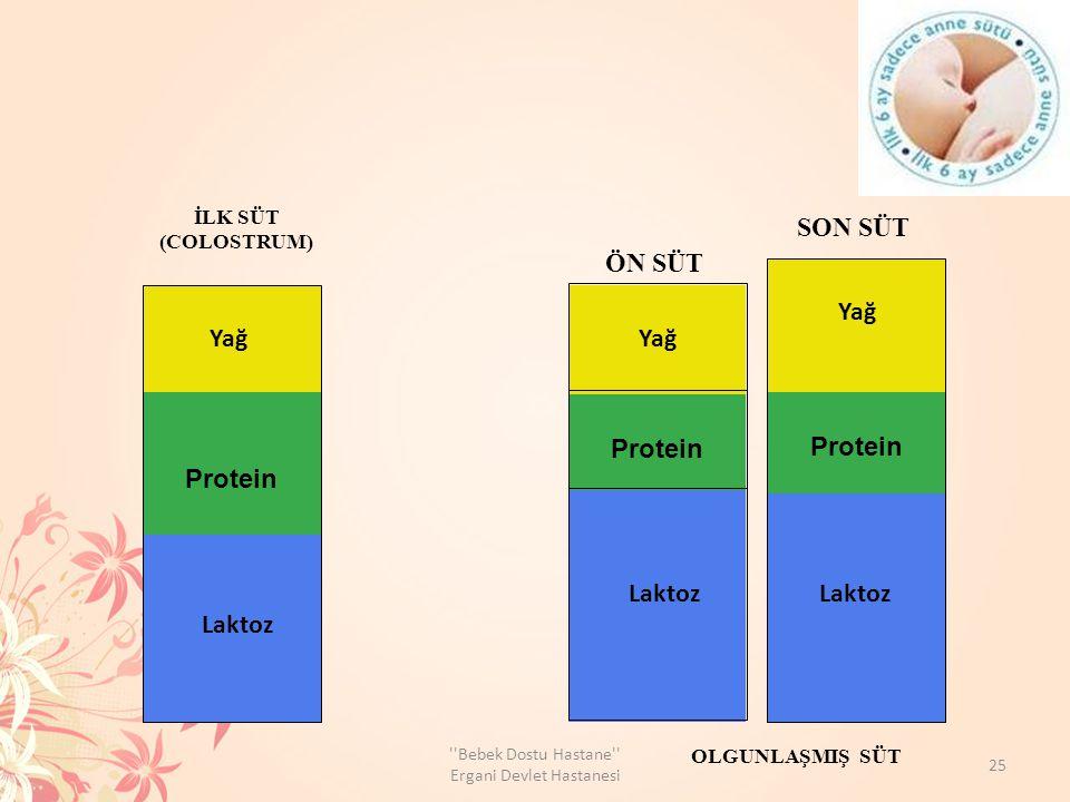 Protein Laktoz Yağ Laktoz ÖN SÜT SON SÜT İLK SÜT (COLOSTRUM) OLGUNLAŞMIŞ SÜT 8 25 Bebek Dostu Hastane Ergani Devlet Hastanesi