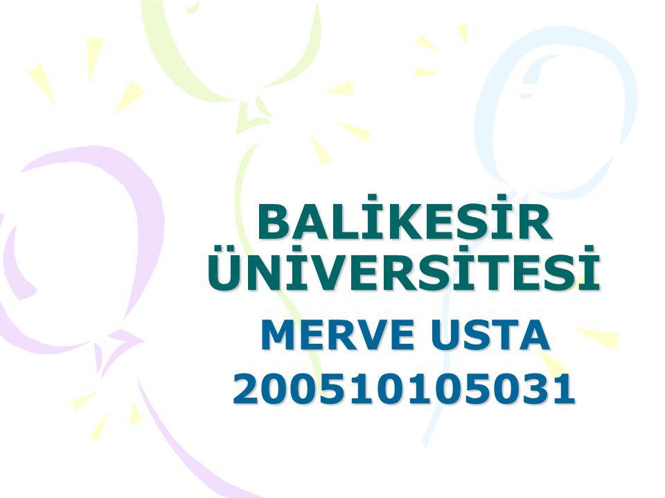 BALİKESİR ÜNİVERSİTESİ MERVE USTA 200510105031