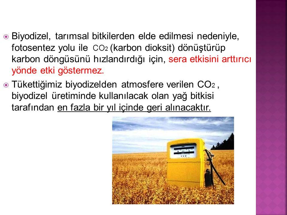  Biyodizel, tarımsal bitkilerden elde edilmesi nedeniyle, fotosentez yolu ile CO 2 (karbon dioksit) dönüştürüp karbon döngüsünü hızlandırdığı için, sera etkisini arttırıcı yönde etki göstermez.