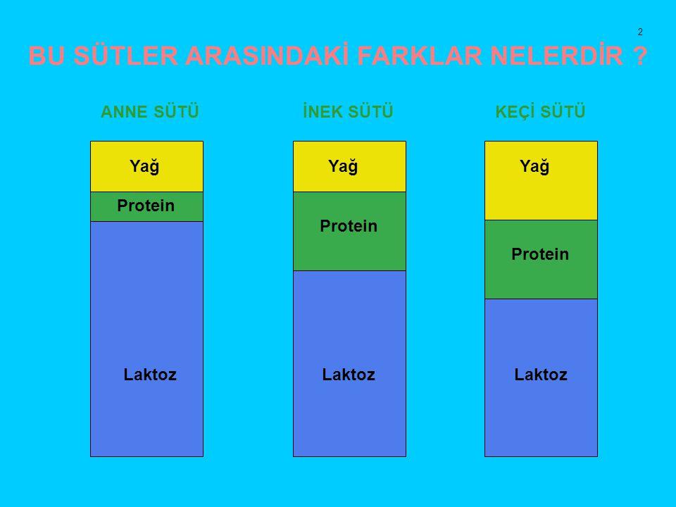 Protein BU SÜTLER ARASINDAKİ FARKLAR NELERDİR ? ANNE SÜTÜ İNEK SÜTÜ KEÇİ SÜTÜ Laktoz Yağ 2
