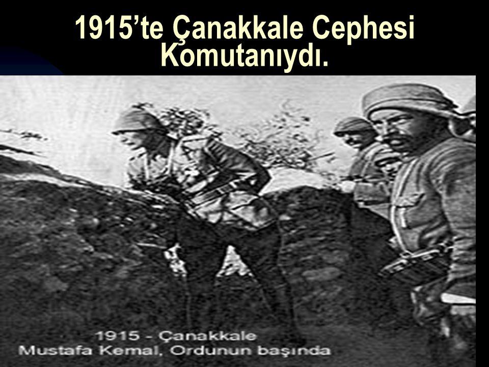 17.12.20149 1915'te Çanakkale Cephesi Komutanıydı.