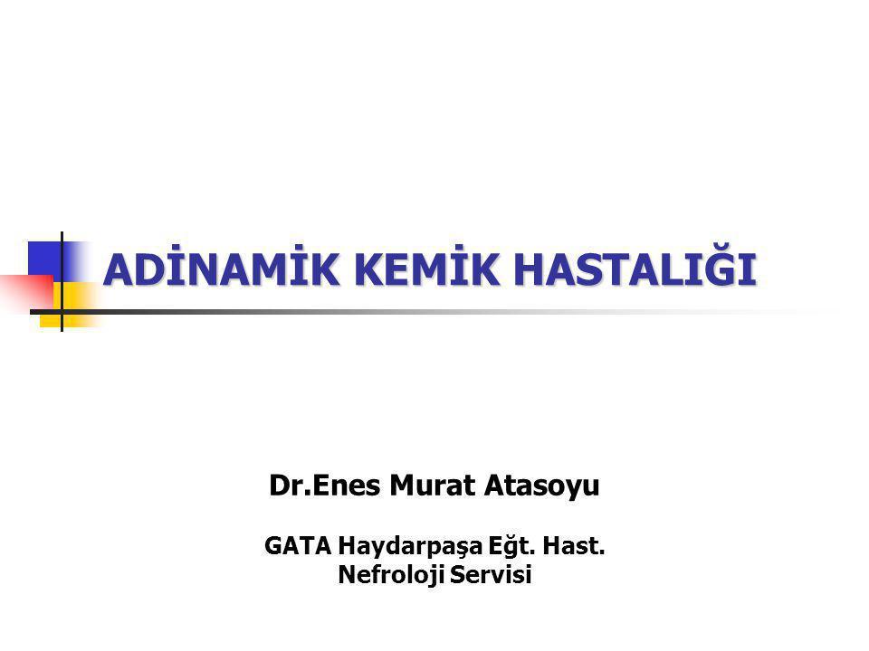 ADİNAMİK KEMİK HASTALIĞI Dr.Enes Murat Atasoyu GATA Haydarpaşa Eğt. Hast. Nefroloji Servisi