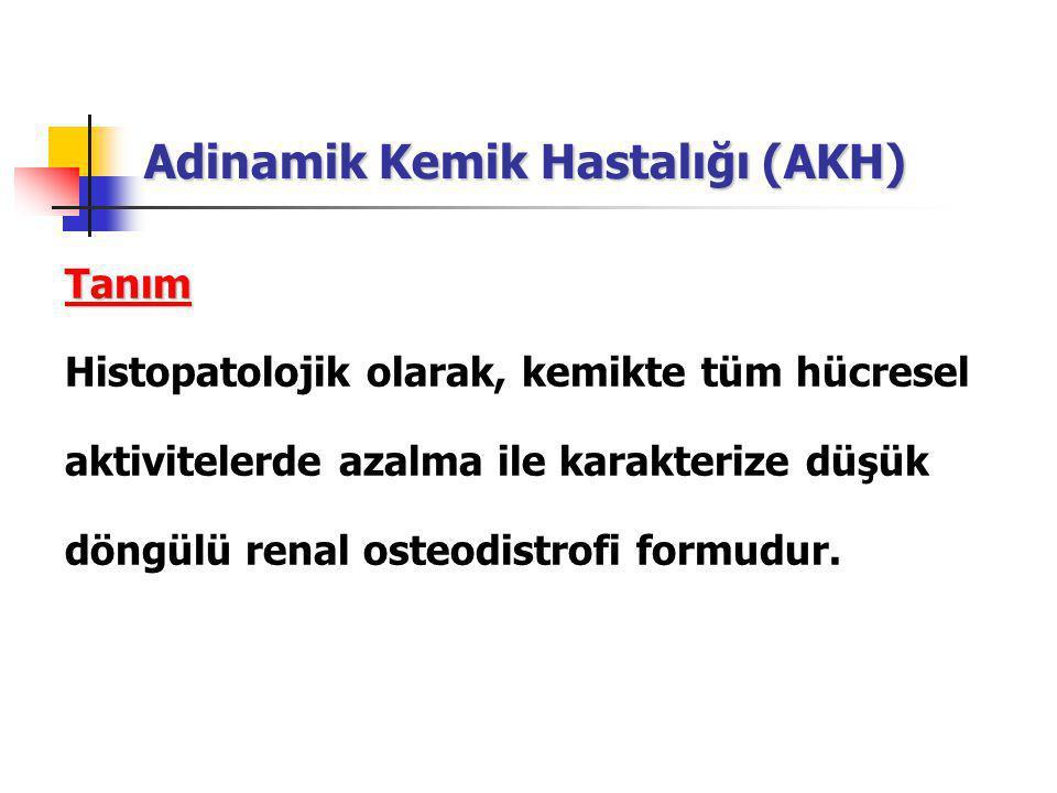 Adinamik Kemik Hastalığı (AKH) Tanım Histopatolojik olarak, kemikte tüm hücresel aktivitelerde azalma ile karakterize düşük döngülü renal osteodistrofi formudur.