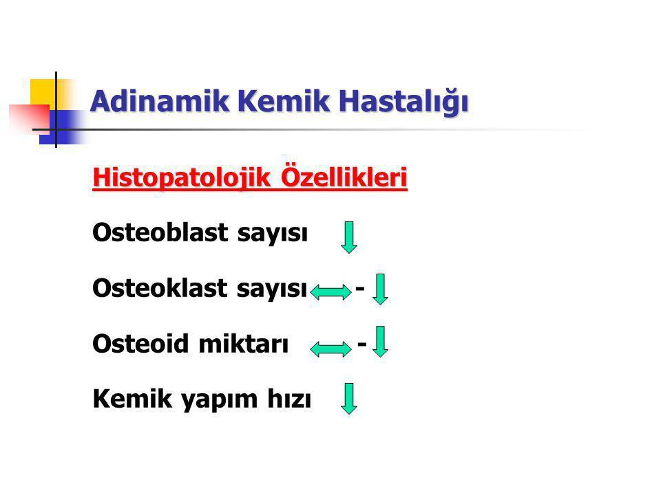 Adinamik Kemik Hastalığı Histopatolojik Özellikleri Osteoblast sayısı Osteoklast sayısı - Osteoid miktarı - Kemik yapım hızı