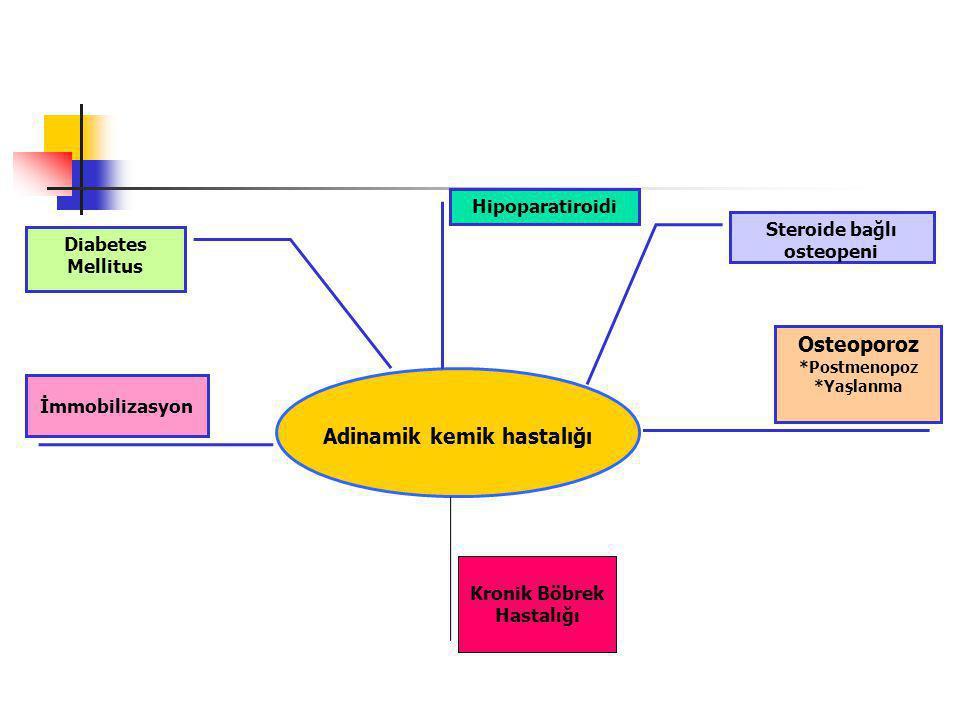 Adinamik kemik hastalığı Hipoparatiroidi İmmobilizasyon Diabetes Mellitus Osteoporoz *Postmenopoz *Yaşlanma Steroide bağlı osteopeni Kronik Böbrek Hastalığı