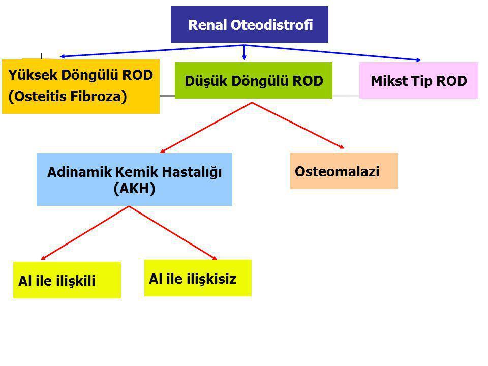 Düşük Döngülü ROD Adinamik Kemik Hastalığı (AKH) Osteomalazi Al ile ilişkili Al ile ilişkisiz Yüksek Döngülü ROD (Osteitis Fibroza) Mikst Tip ROD Renal Oteodistrofi