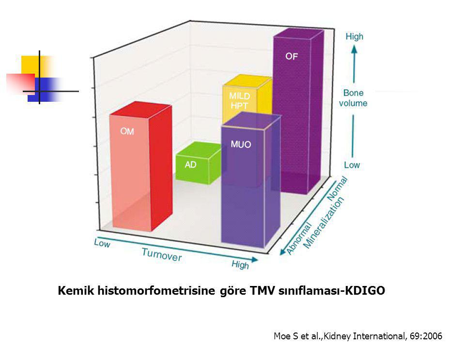 Kemik histomorfometrisine göre TMV sınıflaması-KDIGO Moe S et al.,Kidney International, 69:2006