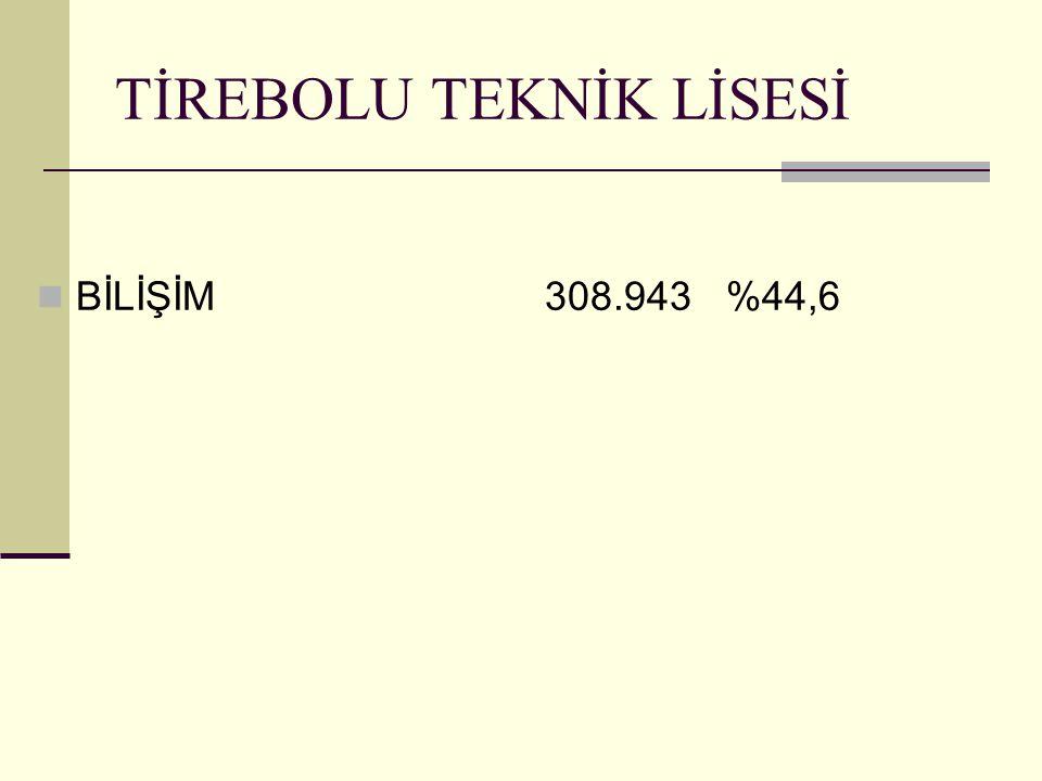TİREBOLU TEKNİK LİSESİ BİLİŞİM 308.943 %44,6