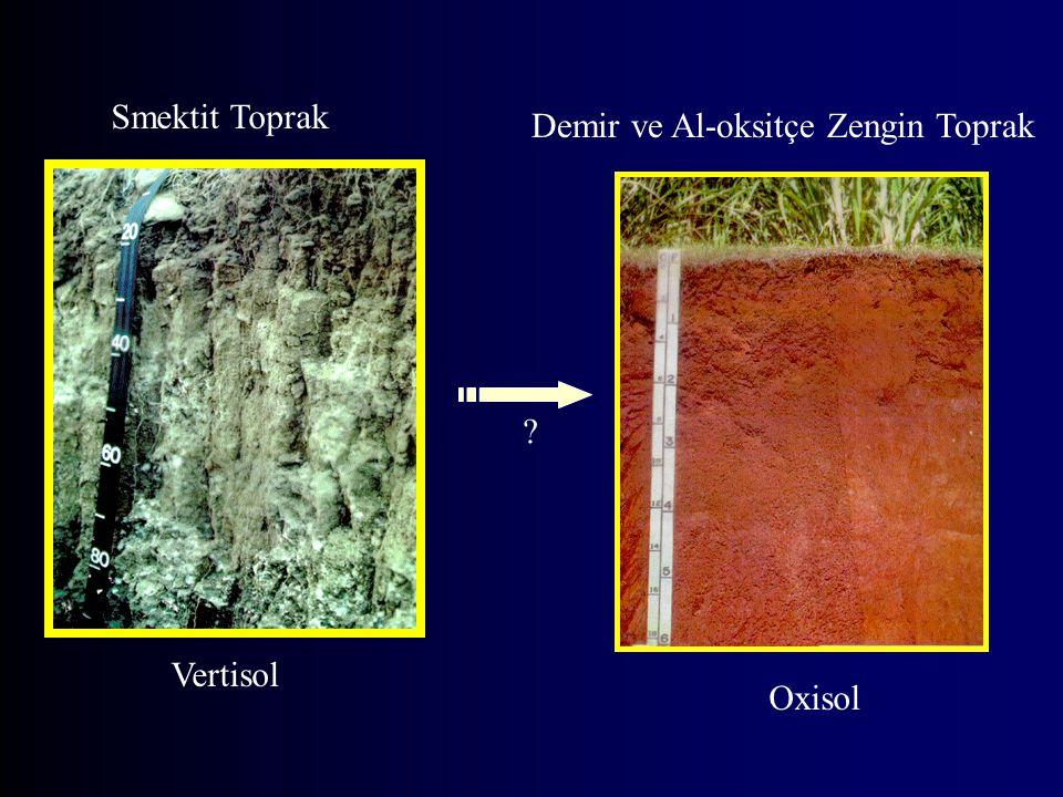 Smektit Toprak Vertisol Oxisol Demir ve Al-oksitçe Zengin Toprak ?