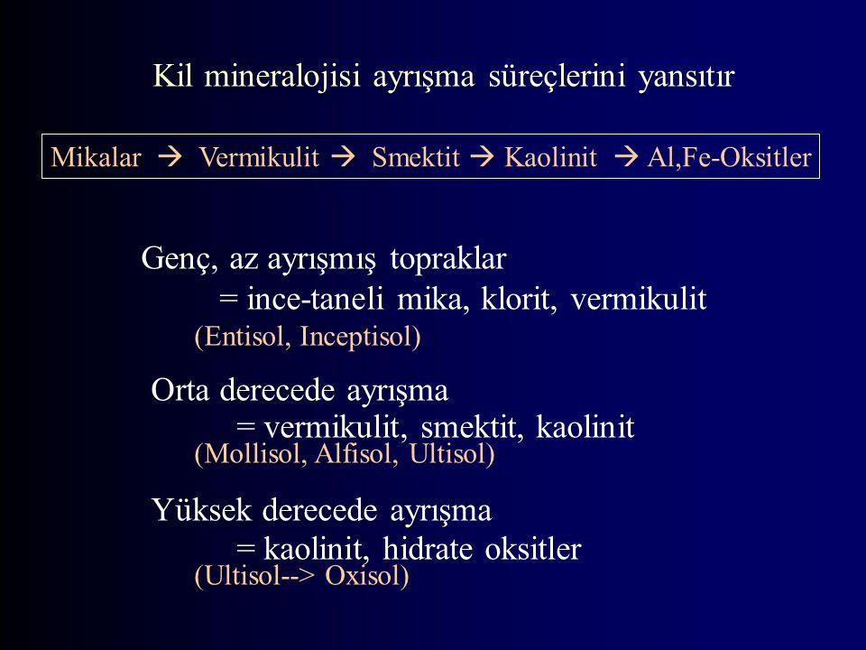 Genç, az ayrışmış topraklar = ince-taneli mika, klorit, vermikulit (Entisol, Inceptisol) Orta derecede ayrışma = vermikulit, smektit, kaolinit (Mollisol, Alfisol, Ultisol) Yüksek derecede ayrışma = kaolinit, hidrate oksitler (Ultisol--> Oxisol) Kil mineralojisi ayrışma süreçlerini yansıtır Mikalar  Vermikulit  Smektit  Kaolinit  Al,Fe-Oksitler