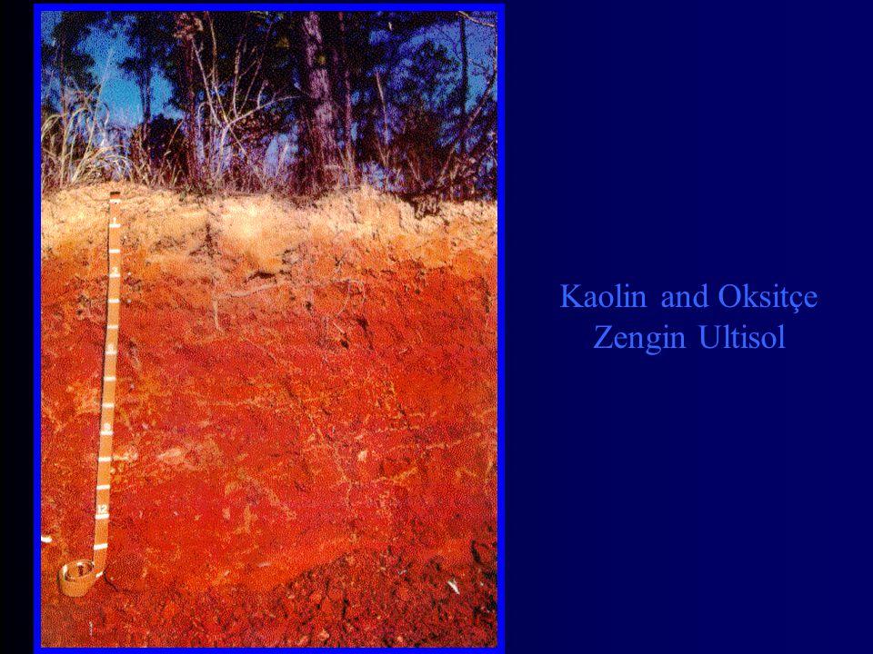 Kaolin and Oksitçe Zengin Ultisol